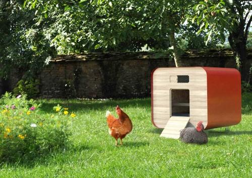 Web Poulailler Design1 Farmili poule