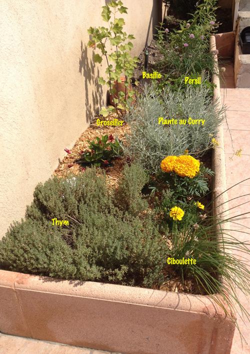 mon coin de verdure un jardin en ville. Black Bedroom Furniture Sets. Home Design Ideas