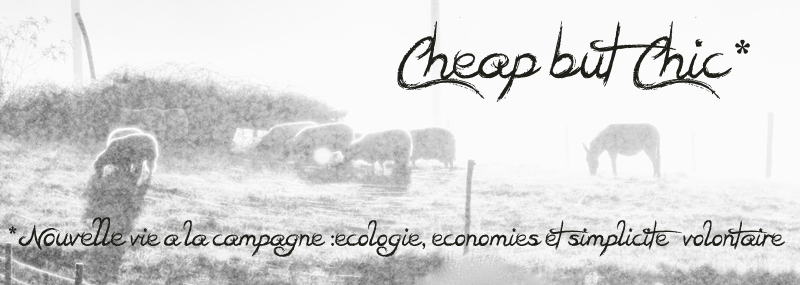 Cheap but chic (à la campagne )